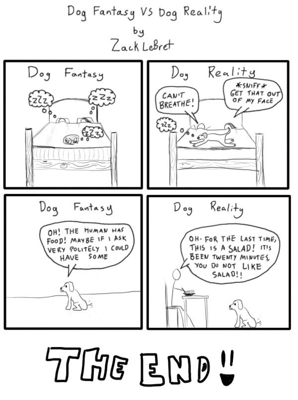 Dog Fantasy VS Dog reality